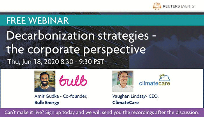 Decarbonization strategies - the corporate perspective