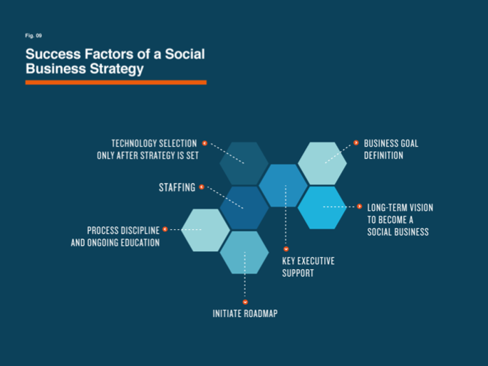 Success Factors of a Social Business Strategy