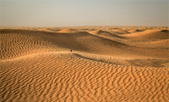 TUNISIA: Solar & Wind Power Auction